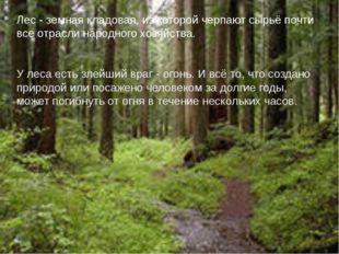 Лес - земная кладовая, из которой черпают сырьё почти все отрасли народного х