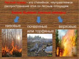 Лесной пожар- это стихийное, неуправляемое распространение огня по лесным пл