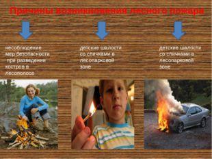 Причины возникновения лесного пожара несоблюдение мер безопасности при развед