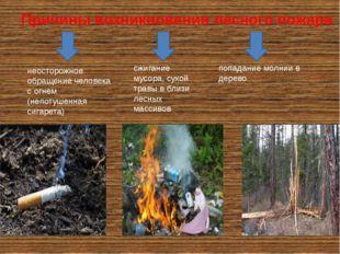 Причины возникновения лесного пожара сжигание мусора, сухой травы в близи лес