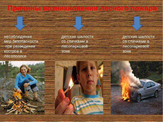 Причины возникновения лесного пожара несоблюдение мер безопасности при развед...