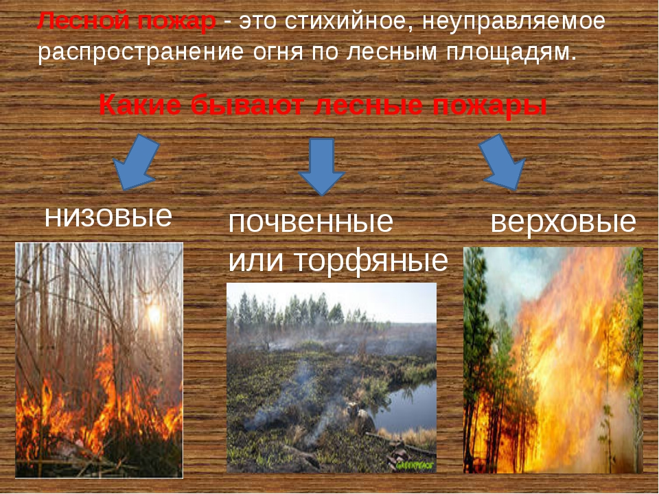 Лесной пожар- это стихийное, неуправляемое распространение огня по лесным пл...