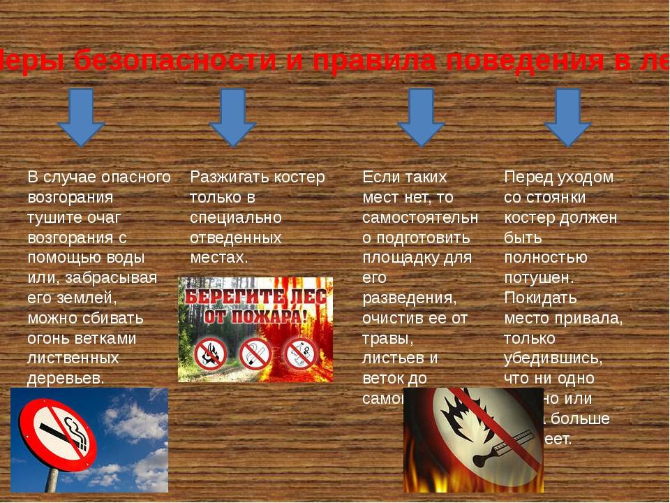 Меры безопасности и правила поведения в лесу В случае опасного возгорания туш...