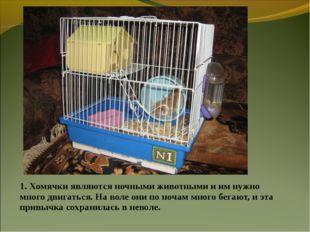 1. Хомячки являются ночными животными и им нужно много двигаться. На воле они