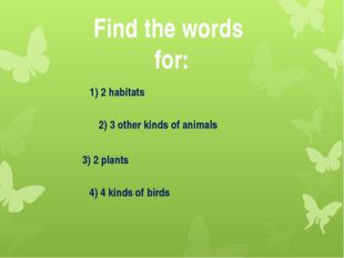 Find the words for: 1) 2 habitats 4) 4 kinds of birds 2) 3 other kinds of ani