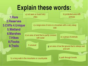 Explain these words: 1.Rare 2.Reserves 3.Cliffs 4.Unique 5.Wetland 6.Marshes