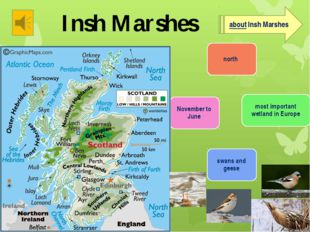 Insh Marshes about Insh Marshes Listen then tell about this place. You can us