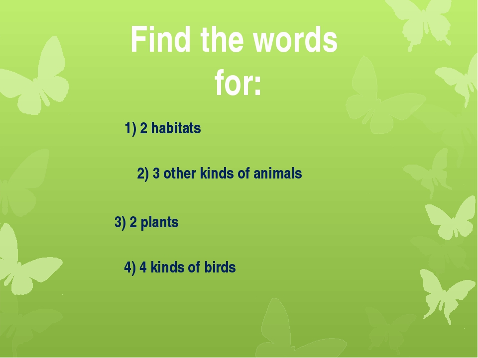 Find the words for: 1) 2 habitats 4) 4 kinds of birds 2) 3 other kinds of ani...