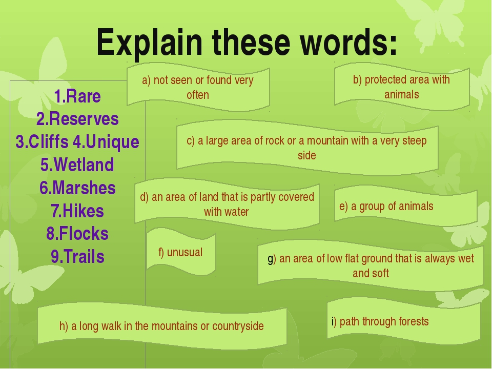Explain these words: 1.Rare 2.Reserves 3.Cliffs 4.Unique 5.Wetland 6.Marshes...