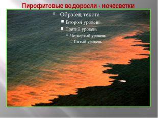 Пирофитовые водоросли - ночесветки