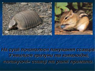 На суші починалося панування ссавців. З'явилися гризуни та комахоїдні, «плану