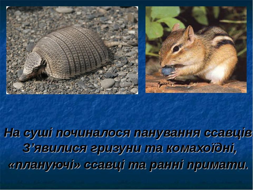 На суші починалося панування ссавців. З'явилися гризуни та комахоїдні, «плану...