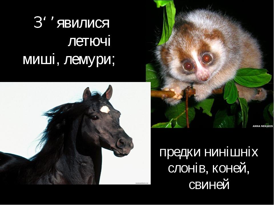 З' ' явилися летючі миші, лемури; предки нинішніх слонів, коней, свиней