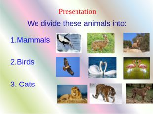 Presentation 1.Mammals 2.Birds 3. Cats We divide these animals into: