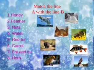 Match the line A with the line B 1.Honey 2.Feather 3. Nuts 4. Water 5. Red f