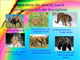 Read about the animals match the pictures with the descriptions This animal