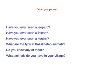 Have you ever seen a leopard? Have you ever seen a falcon? Have you ever see