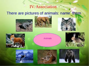 IV. Association There are pictures of animals: name them Animals