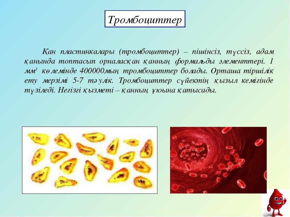 Қан пластинкалары (тромбоциттер) – пішінсіз, түссіз, адам қанында топтасып о...