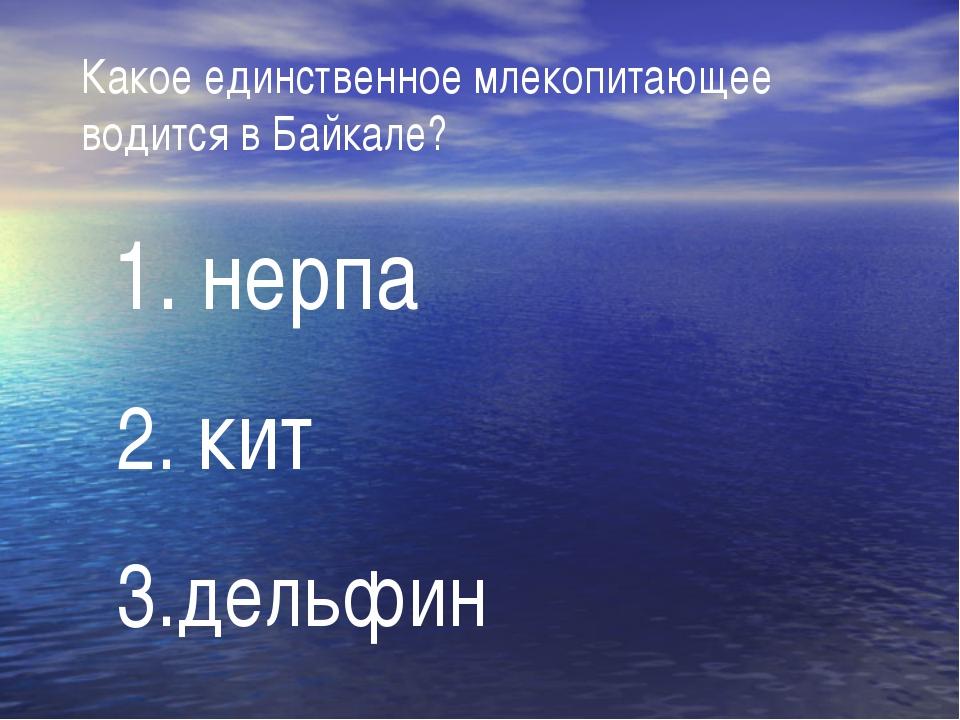 Какое единственное млекопитающее водится в Байкале? 1. нерпа 2. кит 3.дельфин