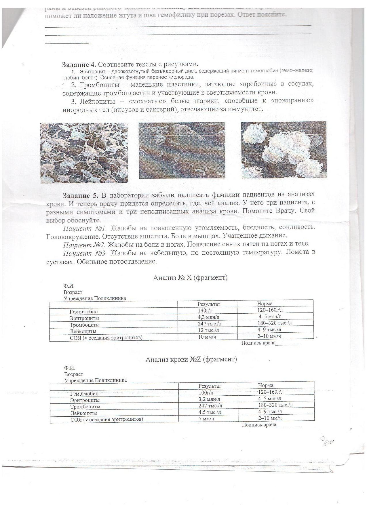 Описание: C:\Documents and Settings\User\Мои документы\Мои рисунки\Изображение\Изображение 055.jpg