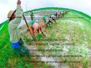 «ЗЕЛЁНАЯ РЕВОЛЮЦИЯ» - комплекс изменений в сельском хозяйстве развивающихся с