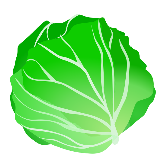 http://images.clipartpanda.com/cabbage-clipart-cabbage.png