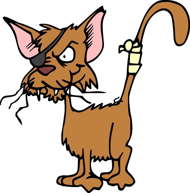 http://pixabay.com/static/uploads/photo/2012/05/07/04/05/cat-47896_640.png