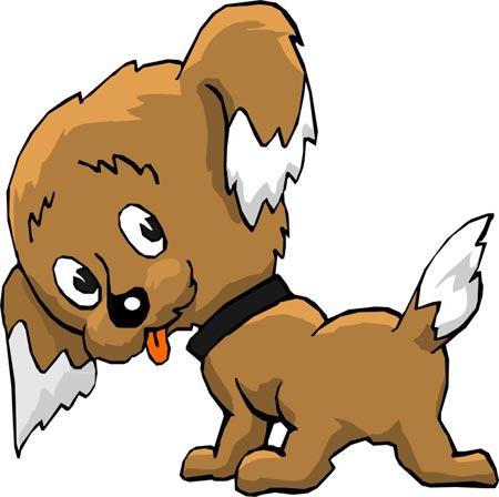 http://www.zooclub.ru/attach/fotogal/clip/dogs/190.jpg