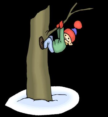 http://www.calvaryaustin.com/wp-content/uploads/2013/01/boy-climbing-tree.png