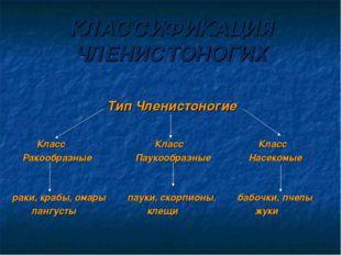 КЛАССИФИКАЦИЯ ЧЛЕНИСТОНОГИХ Тип Членистоногие Класс Класс Класс Ракообразные