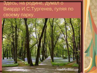 Здесь, на родине, думал о Виардо И.С.Тургенев, гуляя по своему парку.