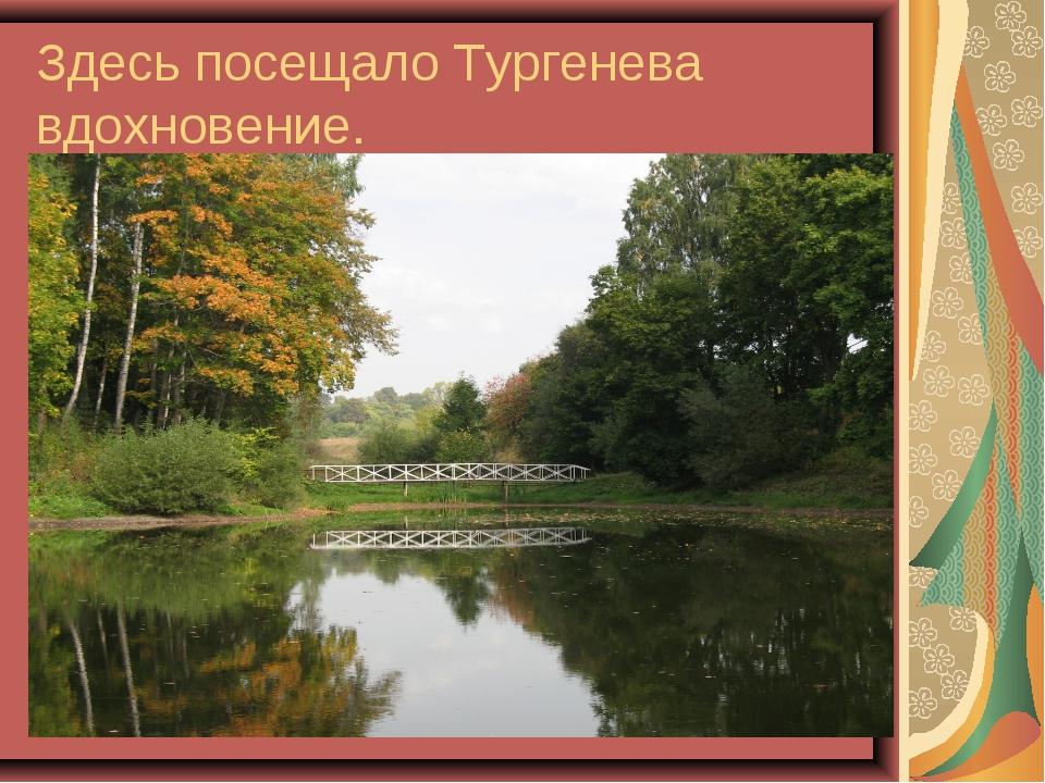 Здесь посещало Тургенева вдохновение.