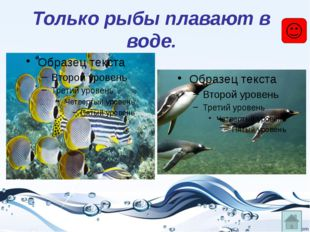 Только рыбы плавают в воде.