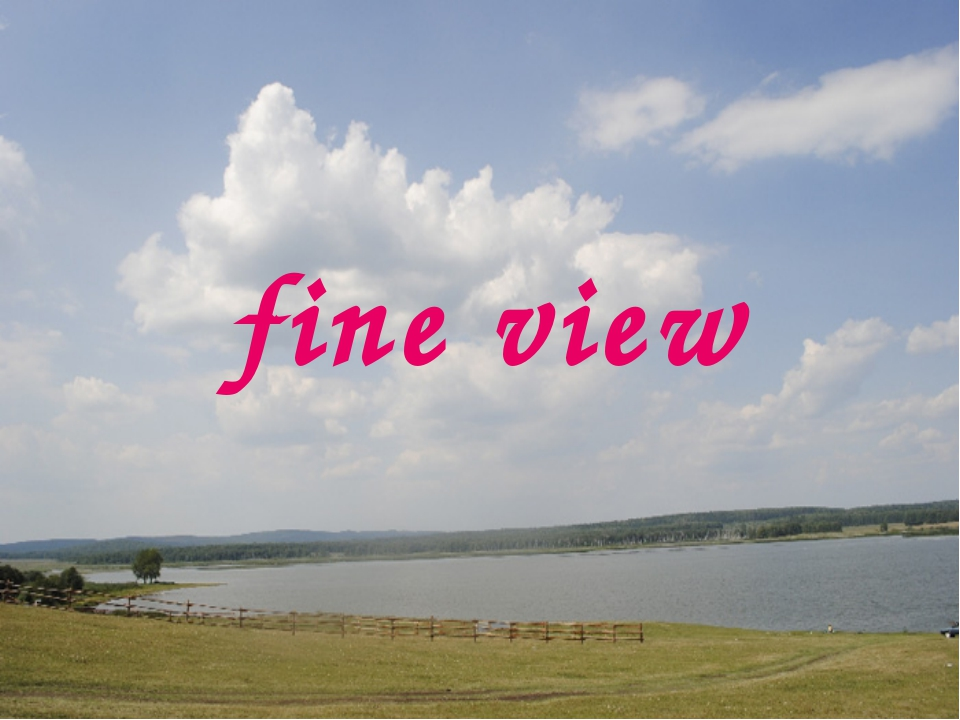 fine view