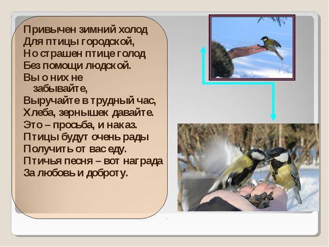 Привычен зимний холод Для птицы городской, Но страшен птице голод Без помощи...