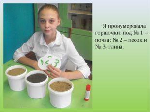 Я пронумеровала горшочки: под № 1 – почва; № 2 – песок и № 3- глина.