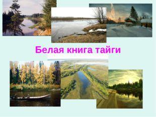 Белая книга тайги