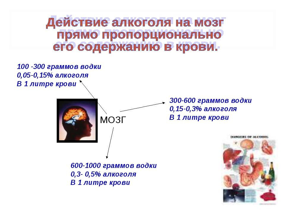 100 -300 граммов водки 0,05-0,15% алкоголя В 1 литре крови 300-600 граммов во...