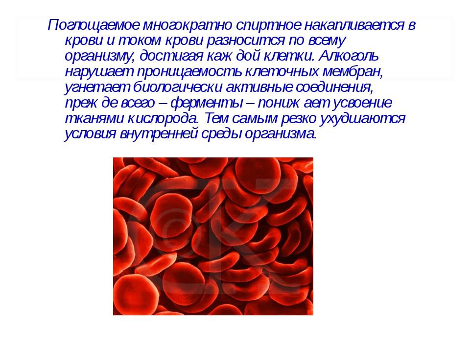 Поглощаемое многократно спиртное накапливается в крови и током крови разносит...