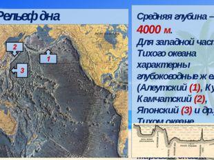 Средняя глубина – около 4000 м. Для западной части Тихого океана характерны