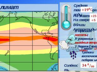 Средняя температура воды Климат Гавайи– 12 090 мм; Тропики восточного побере