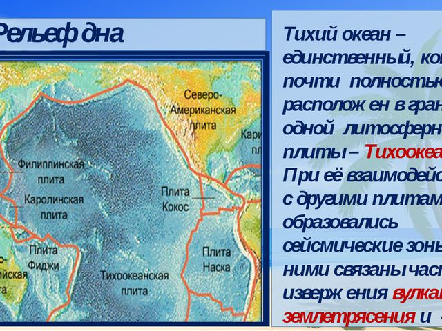 Тихий океан – единственный, который почти полностью расположен в границах од...