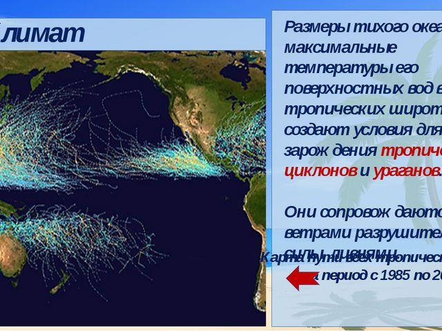 Климат Карта пути всех тропических циклонов за период с 1985 по 2005 год