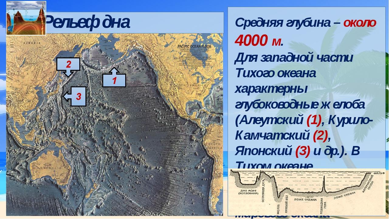Средняя глубина – около 4000 м. Для западной части Тихого океана характерны...