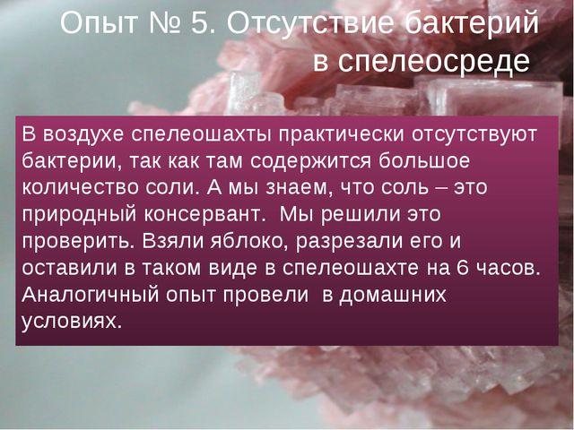 Опыт № 5. Отсутствие бактерий в спелеосреде В воздухе спелеошахты практически...