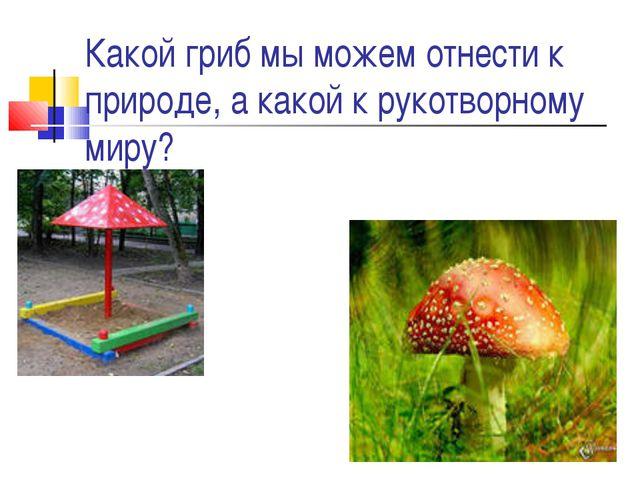 Какой гриб мы можем отнести к природе, а какой к рукотворному миру?