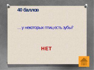 20 баллов Как, согласно русским поверьям, зовут жену домового? КИКИМОРА