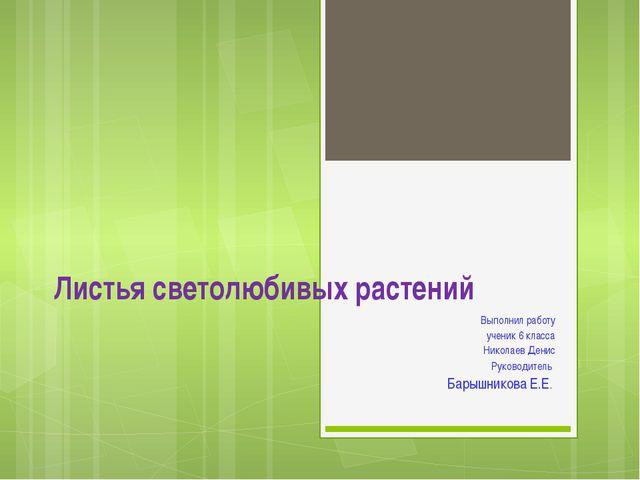 Листья светолюбивых растений Выполнил работу ученик 6 класса Николаев Денис Р...