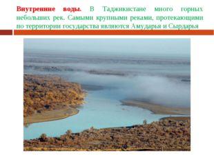 Внутренние воды. В Таджикистане много горных небольших рек. Самыми крупными р